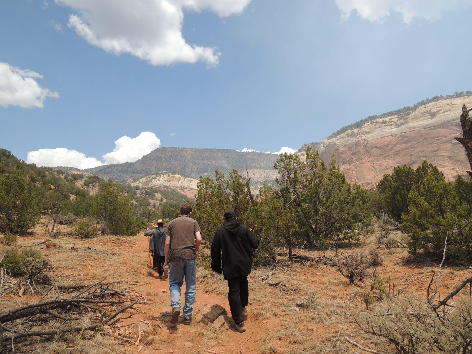 Lay observers on a hike